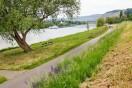 Radweg an der Mosel entlang